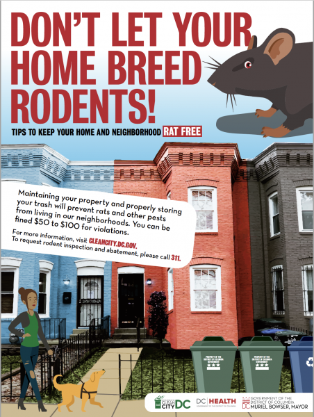 Rodent Poster.png