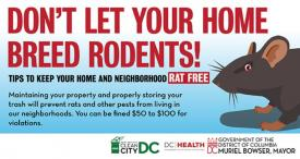 Don't let your home breed rodents